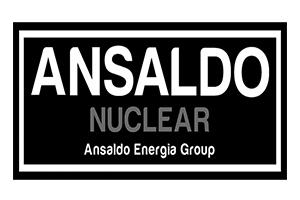 Ansaldo nuclear logo